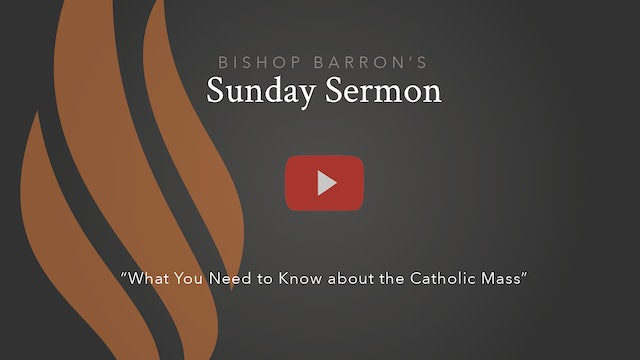 What You Need to Know about the Catholic Mass — Bishop Barron's Sunday Sermon