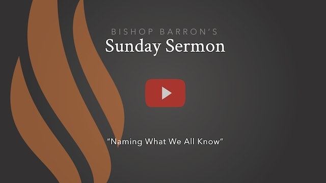 Naming What We All Know — Bishop Barron's Sunday Sermon