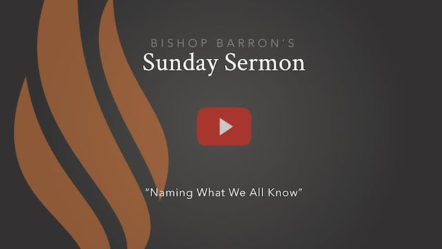Naming What We All Know — Bishop Barr...