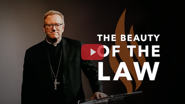 The Beauty of the Law — Bishop Barron's Sunday Sermon