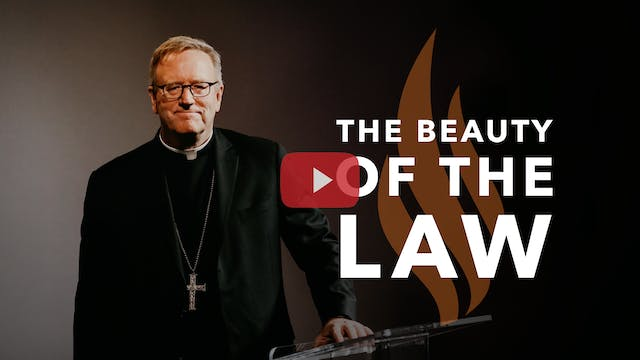 The Beauty of the Law — Bishop Barron...