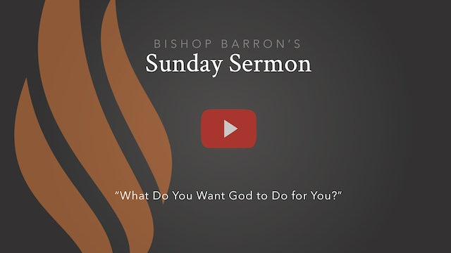 What Do You Want God to Do for You? – Bishop Barron's Sunday Sermon