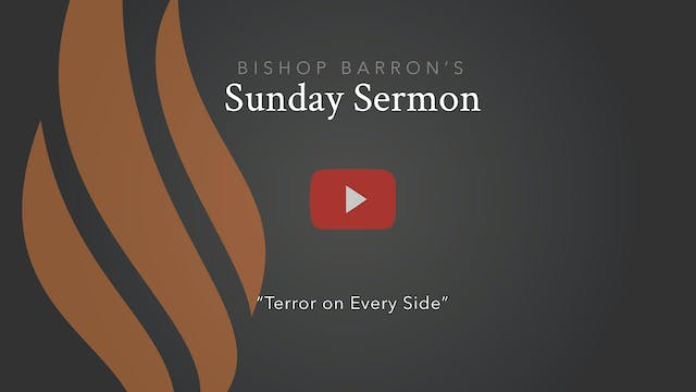 Terror on Every Side — Bishop Barron'...
