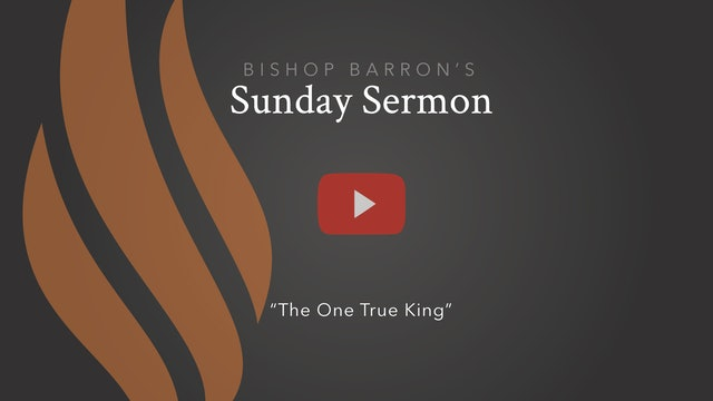 The One True King — Bishop Barron's Sunday Sermon