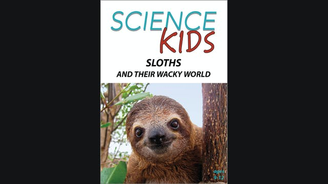 Science Kids - Sloths and Their Wacky World