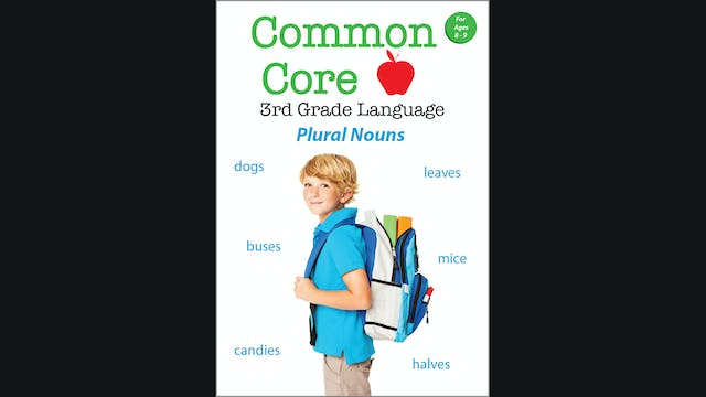 Common Core - 3rd Grade Language - Pl...