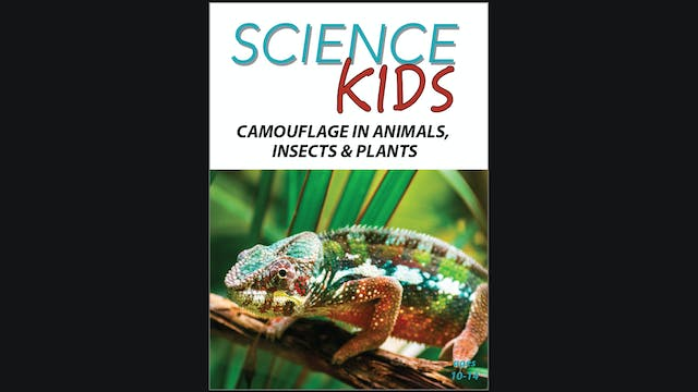 Science Kids - Camouflage in Animals,...