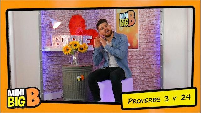 Bible Devotions | Proverbs 3v24