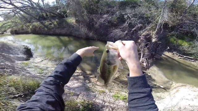 Winter Bass Creek Fishing
