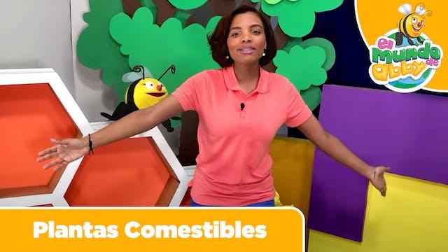 05 - Plantas Comestibles (Edible Plants)