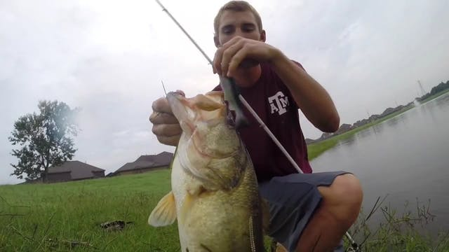 Catching Schooling Bass on Rage Craws...