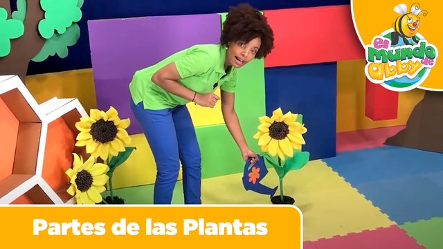 17 - Partes de las Plantas (Parts of the Plants)