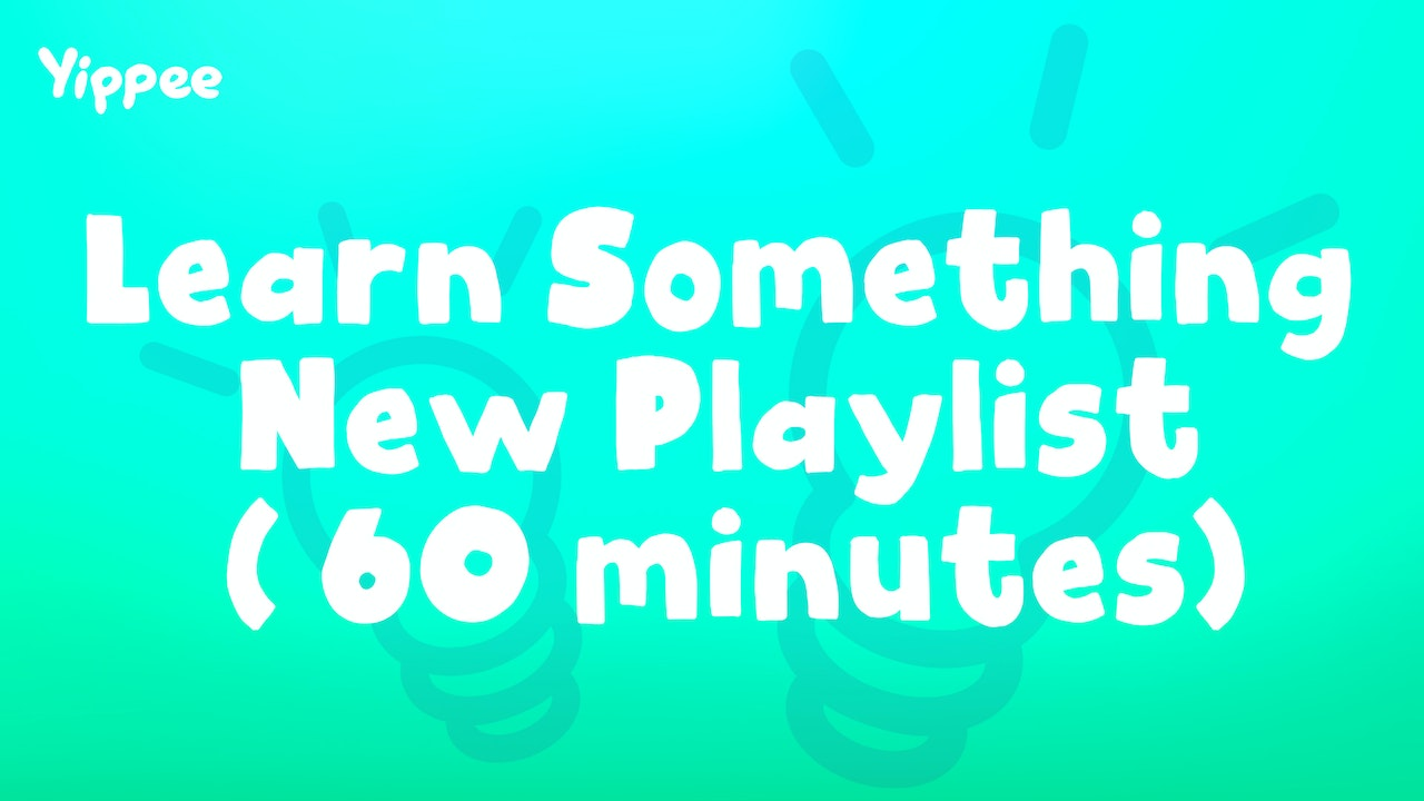 Learn Something New Playlist (60 Minutes)