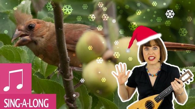 Twelve Days of Christmas by Alina Celeste - Kids Songs