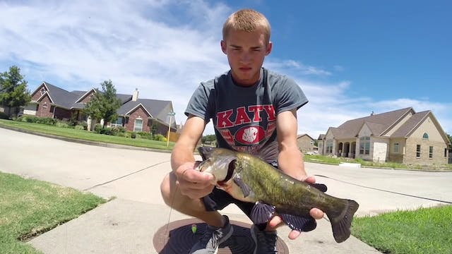 Using Hot Dogs for Bullheads in the S...