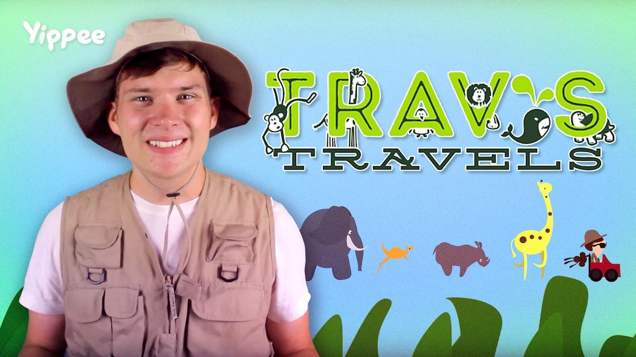 Travs Travels