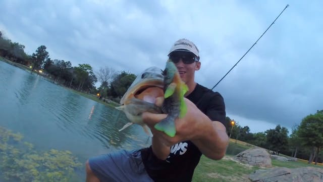 Catching a Big Bass Spawning with a M...