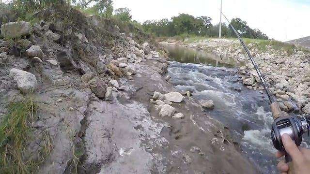 My New Favorite Creek!