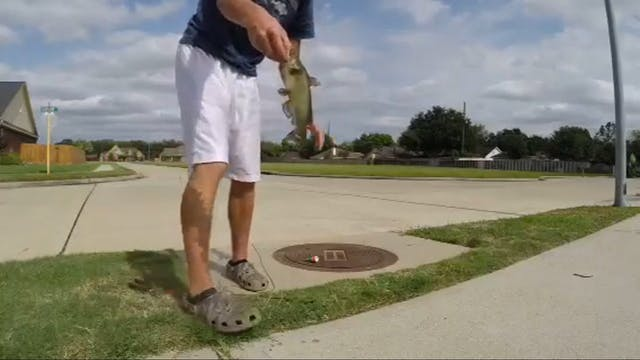 Catch and Release Sewer Fishing