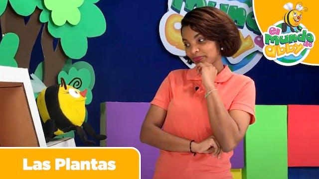09 - Las Plantas (The Plants)