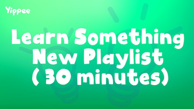 Learn Something New Playlist (30 Minutes)