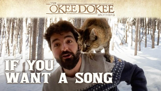 If You Want a Song - The Okee Dokee B...