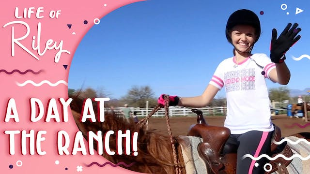 A Day at the Ranch