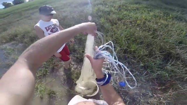 Cast Netting for Shad