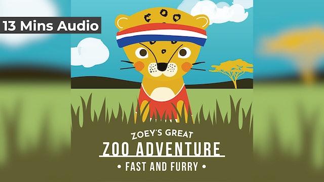 Zoo Adventure - Day 1 - Cheetah
