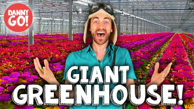 Danny Go Visits a GIANT Greenhouse!