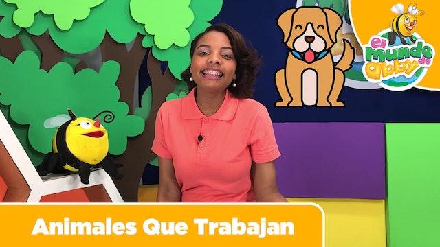 11 - Animales que Trabajan (Animals That Work)