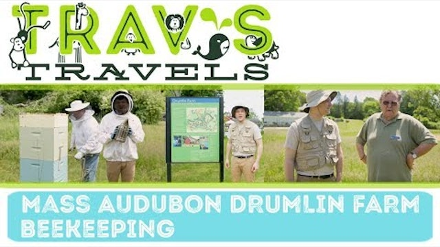 Mass Audubon's Drumlin Farm and Wildlife Sanctuary- Beekeeping