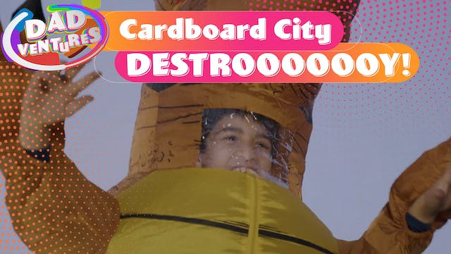 Cardboard City DESTROOOOOOY!