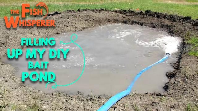 Filling Up My DIY Bait Pond!