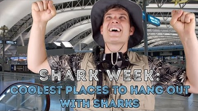 Shark Week- Coolest Places to Hang Out with Sharks