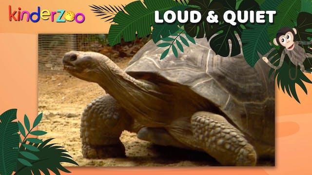 Loud & Quiet