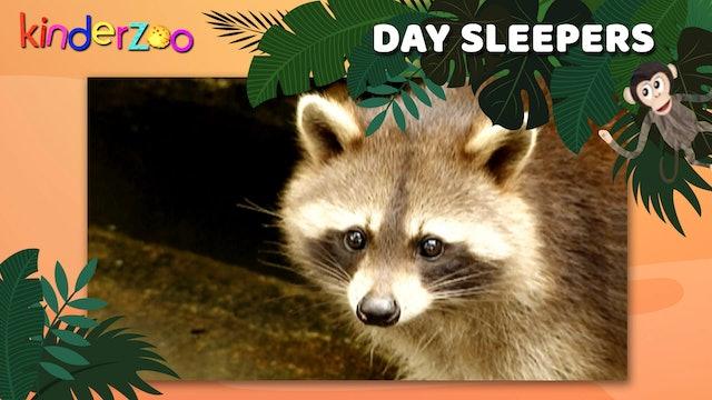 Day Sleepers