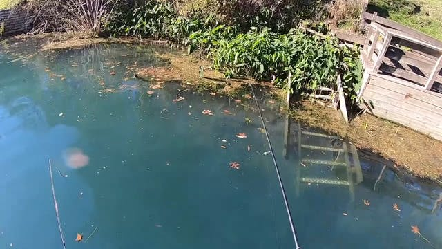 Fishing a Crystal Clear River in Texas