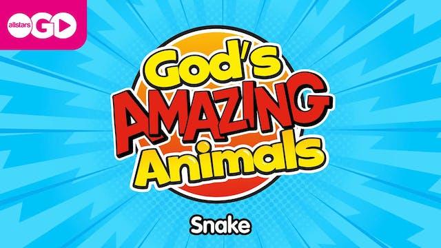 God's Amazing Animals | Snake