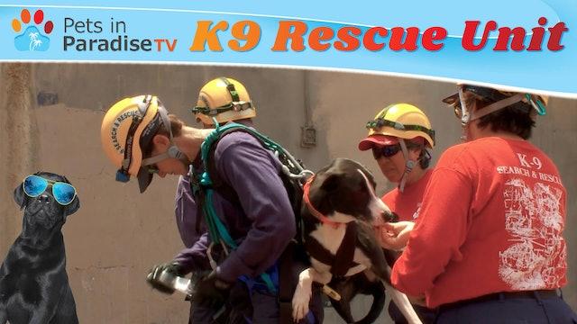 K9 Rescue Unit