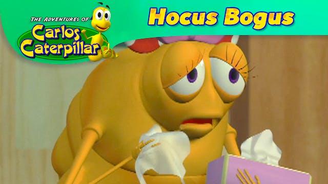Hocus Bogus