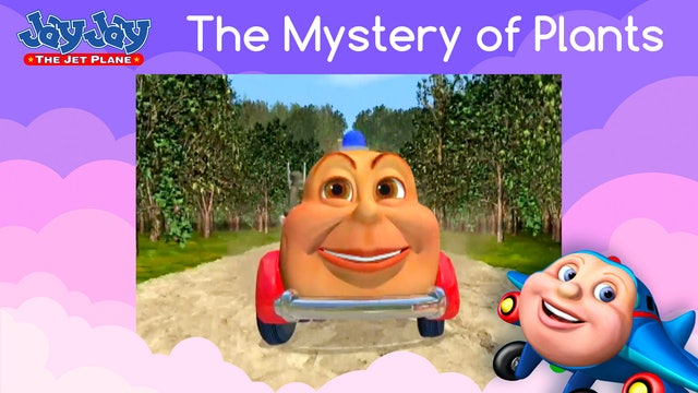 The Mystery Of Plants