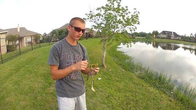 Bullfrog Fishing