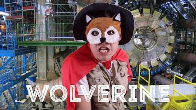 Wolverine - Animal Facts