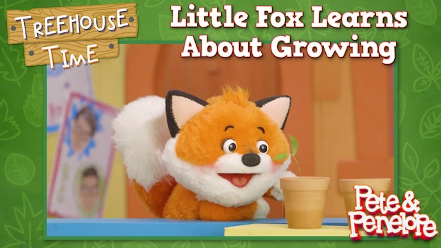 Little Fox Learns About Growing