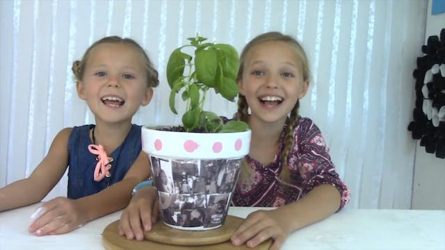 EP. 35 DIY | How to Make a Flower Pot...