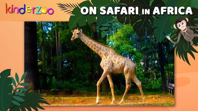 On Safari in Africa