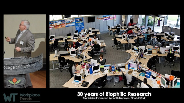 5.5 Beyond Biophilic Design: Creating great physical environments ...