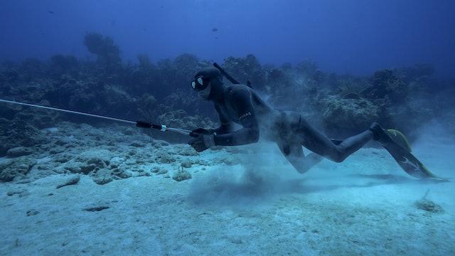 Bahamas Spearfishing | Luke Maillis