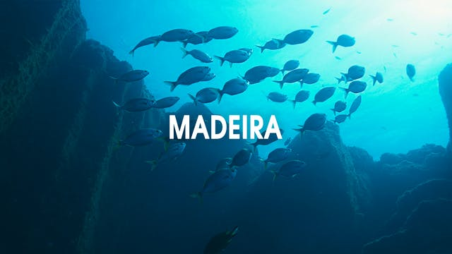 Madeira | Blue Seas, Green Mountains,...